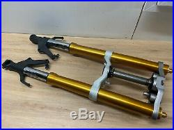 A Fork Gold Tube Stick Te Scabbard Yamaha Fazer 1000 FZ1 2011 without ABS