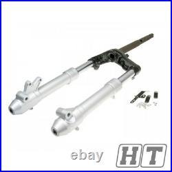 Front fork assy 30mm inner tube for Yamaha Aerox, MBK Nitro (02-)
