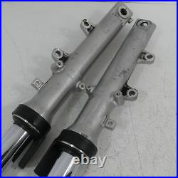 Yamaha FZS 600 Fazer RJ02 Stand Pipe Immersion Tubes Fork Shock Front A4755